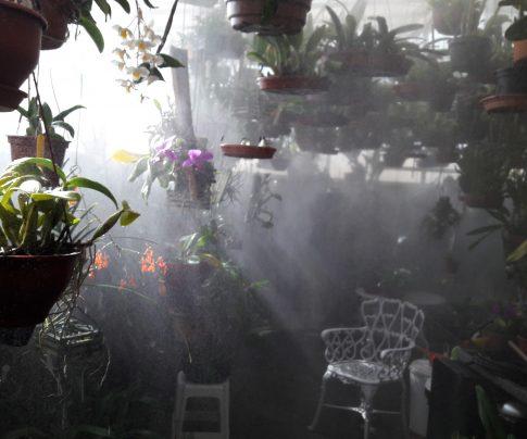 Nebulizador Orquidário